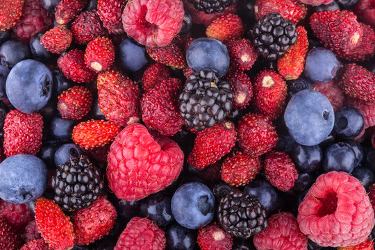 berry background