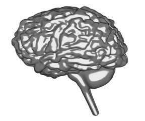 cartoon image of human brain