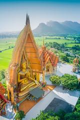 Buddha of statue