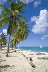 Hawksbill Beach, Antigua