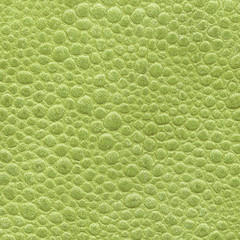 yellow-green leather texture