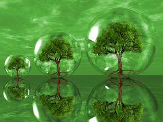the green trees in bubbles