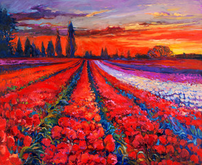 Fotobehang Rood Poppy fields