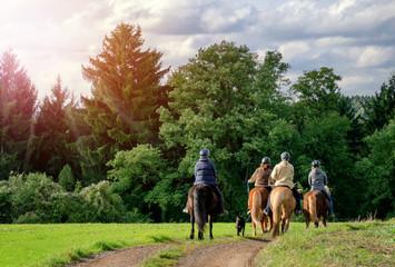 Photo sur Plexiglas Equitation Idyllischer Ausritt - Gruppe Reiter Pferde - Horse Riding