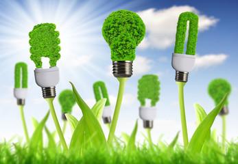 eco energy bulb with sunny sky