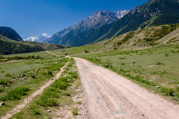 Wall Mural - Country road in Tien Shan mountains
