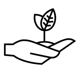 Young plant on hand vector icon