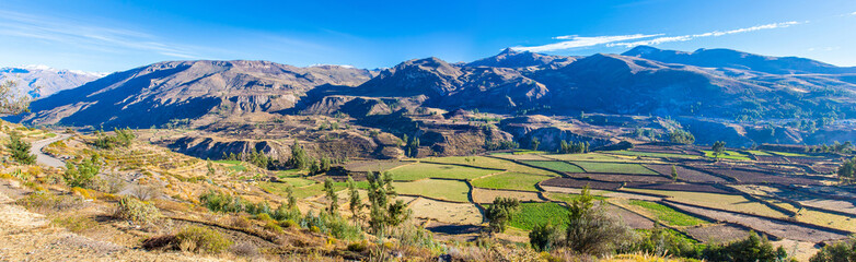 Panorama of Colca Canyon, Peru,South America.