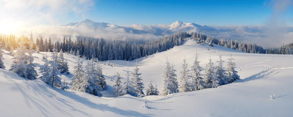 Fototapete - Panorama of winter mountains