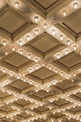 Old Theater Marquee Ceiling Lights Vertical