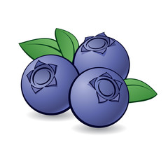 Cartoon blueberry.