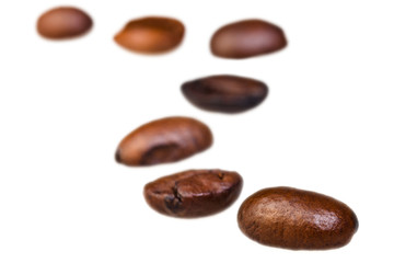 curve pattern from roasted coffee beans