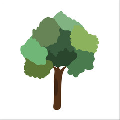 vector Illustration of tree with green foliage