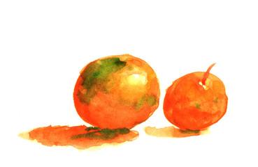 juicy orange water color painting