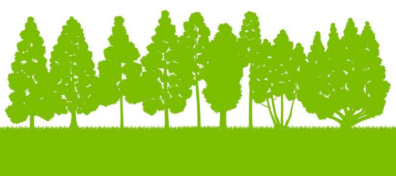 Forest trees silhouettes landscape illustration background vecto