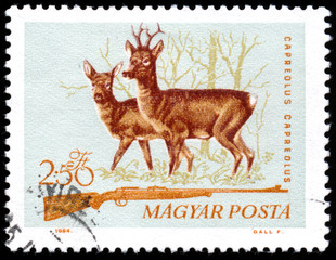 """HUNGARY - CIRCA 1964: A stamp printed in Hungary from the """"Hunti"""