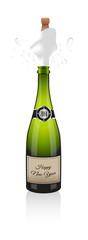 2014 Champagne bottle