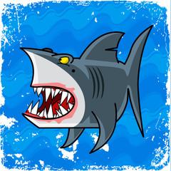 bad shark