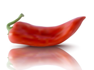 realistic red pepper
