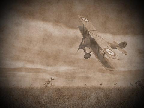 Biplane flying - 3D render