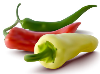 vector red, green and yellow peppers