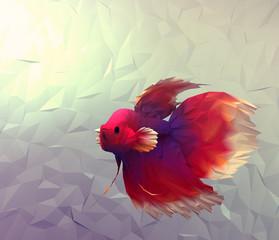 Fight fish 3d surface illustration betta siamese wallpaper