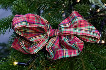 Fiocco natalizio appeso su di un abete