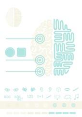 mózg widok z góry schemat elementy infograficzne