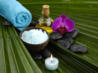 image of tropical spa on palm