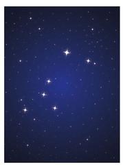 Constellation Big dog