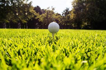 golfball auf wiese