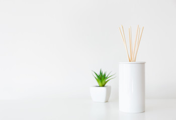 Home diffuser and potted plant