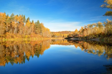 Autumn river Gauja in Sigulda, Latvia. Landscape with reflection