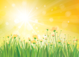 Vector sunshine background with yellow flowers.