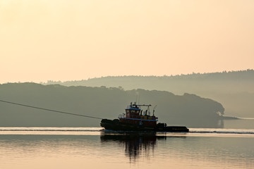 Tugboat in the early morning light
