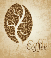 Coffee tree. Coffee bean