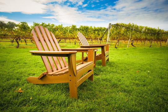 Adirondack style chair on lawn of vineyard