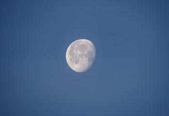 moon on a morning sky