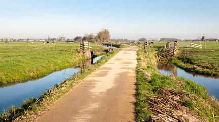 Typical Dutch polder landscape