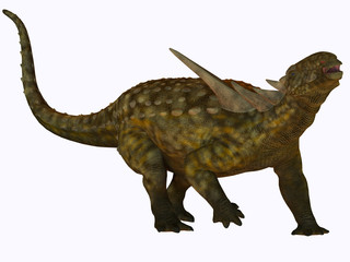 Sauropelta on White