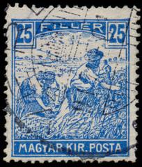 HUNGARY - CIRCA 1916: A stamp printed in Hungary shows Harvestin