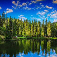 Mountain lake in coniferous forest