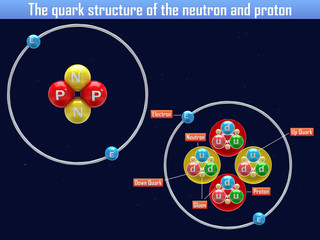 The quark structure of the neutron and proton