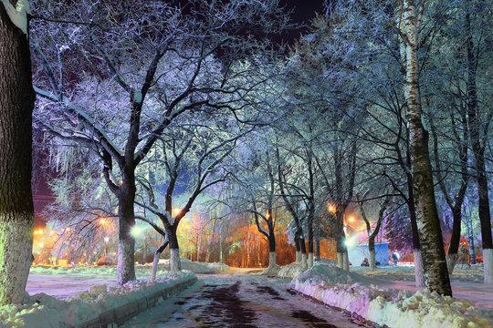 night winter landscape in the city