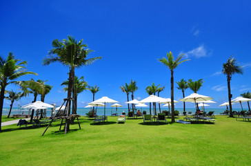 Canvas beds on tropical beach with coconut palm and umbrellas.