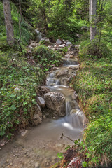 Bachlauf im Wald  © Matthias Buehner