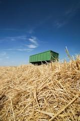 Fototapete - Getreideernte, Transportanhänger