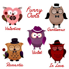 funny owls. set for your design.