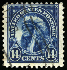 Vintage US Stamp of an American Indian