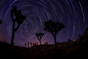 Light Painted Landscape of Stars